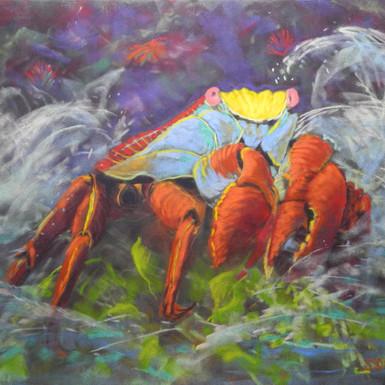 "Sally Lightfoot Crab 12""x16"""