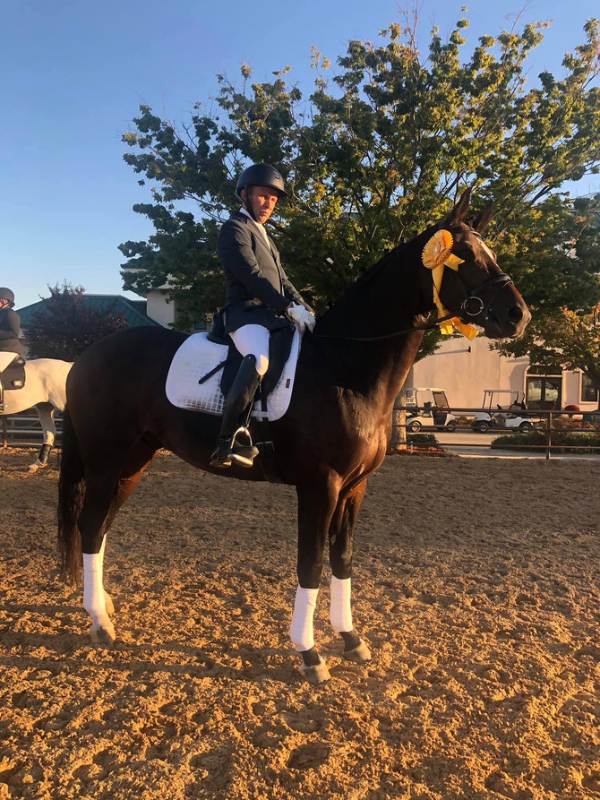 Inferno M: 2019 USDF/KWPN Association 4th in Nation