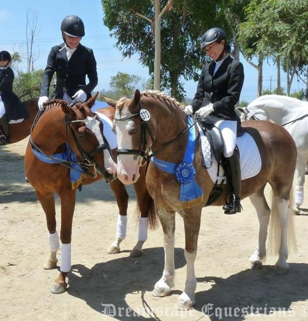 California Dressage Society: Southern Regional Adult Amateur Championships