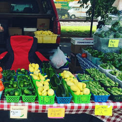 LFM close-up of merchant vegetables.jpg