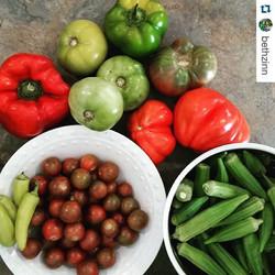 LFM close-up of vegetables.jpg