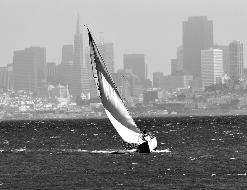 SailboatSFSkyline - Copy.JPG
