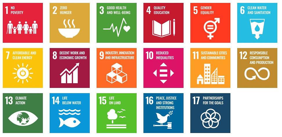 17 SD Goals.JPG