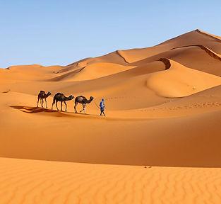 Sahara_edited.jpg