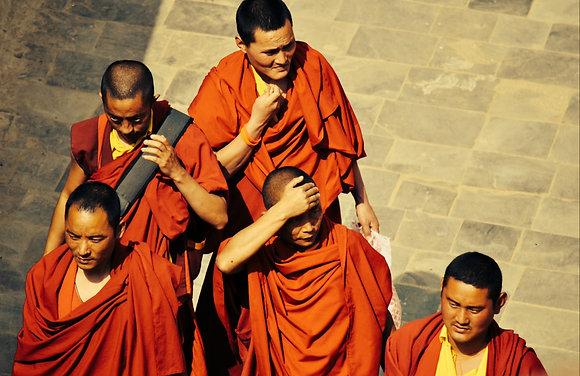 Monks on pilgrimage