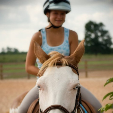 2K Stables offers weekly and monthly riding lesson options to suit your abilities and budget!