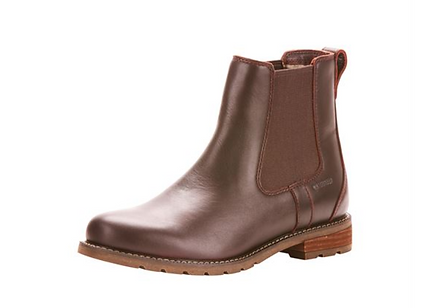 ariat wexford.png