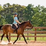 2K Stables   Full service equestrian facility on a 35+ acre farm!!