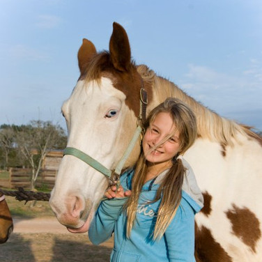 2K Stables is a family owned and operated full service equestrian facility!