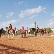 Join us at 2K Stables! The best full service equestrian facility in Hockley, Texas!
