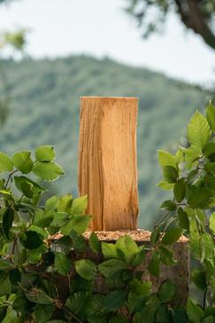 Holzscheit Produktfoto
