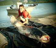 Jonathan Paris Guide de pêche carnassiers sandres verticale