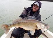 Guide de pêche Silure sur le Rhône