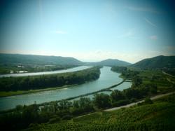 Vieux Rhône et Rhône canalisé