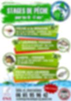 ENSEMBLE APN 2.jpg