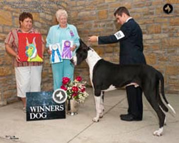 Chandler Buck web WinnersPM_013.jpg