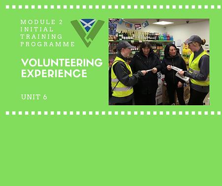 Volunteering Experience