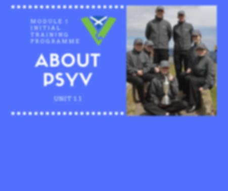 About PSYV