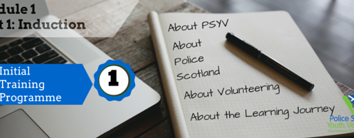 About Volunteering in PSYV