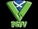 psyv beveled logo2018.png