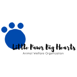 Little Paws Big Hearts