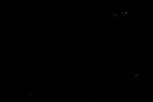 SPECIALMENTION-AsiaSouthEast-ShortFilmFe
