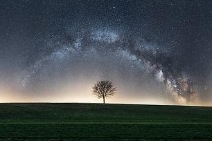 Baum_Milchstraße__für_wix.jpg