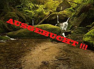 Schwarzwald Ausgebucht555 zoomwork.jpg
