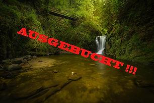 Schwarzwald WS ausgebucht.jpg