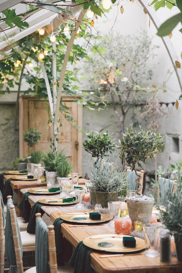 Potted Herbs and Trees for Wedding Reception Table Centres