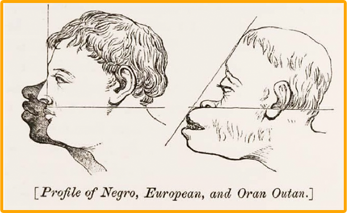 Crani-Profile-of-racism.png