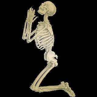 begging skeleton sales.png