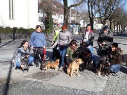 Plauschgruppe Hundeschule Sitz
