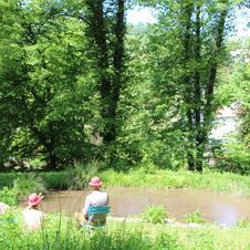 pique nique à l'étang