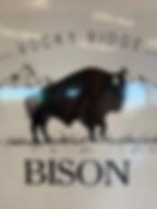 Rocky Ridge Bison.jpg