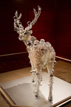 Taxidermied Deer in Glass, The Met
