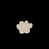 logo lapatapo