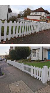 Collage 2020-11-24 16_08_29.jpg