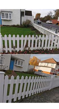 Collage 2020-11-24 16_06_47.jpg