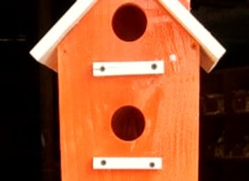 HnS Bird House for Sparrow, Robin and Other Medium and Small size Garden Birds
