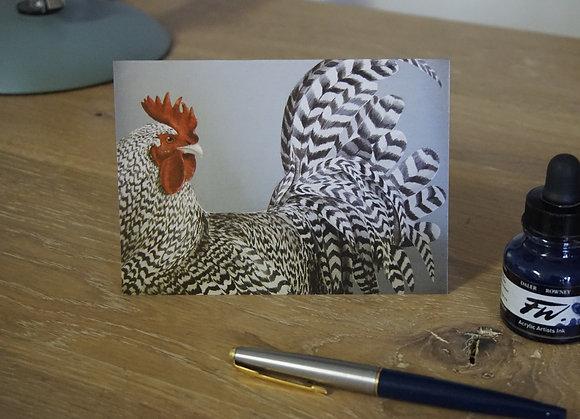 Scots Grey Cockerel card