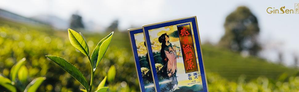 fei yan tea banner copy.png