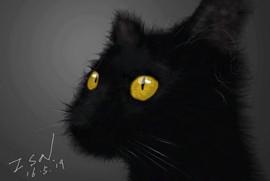 黑猫.jpg