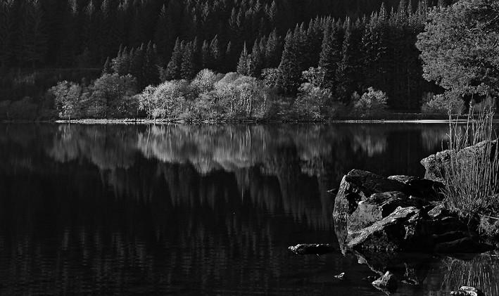Calm Loch Eck - David Fiddes