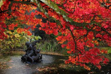 Autumn at Benmore Pond
