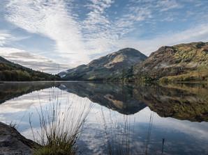 Loch Eck Morning