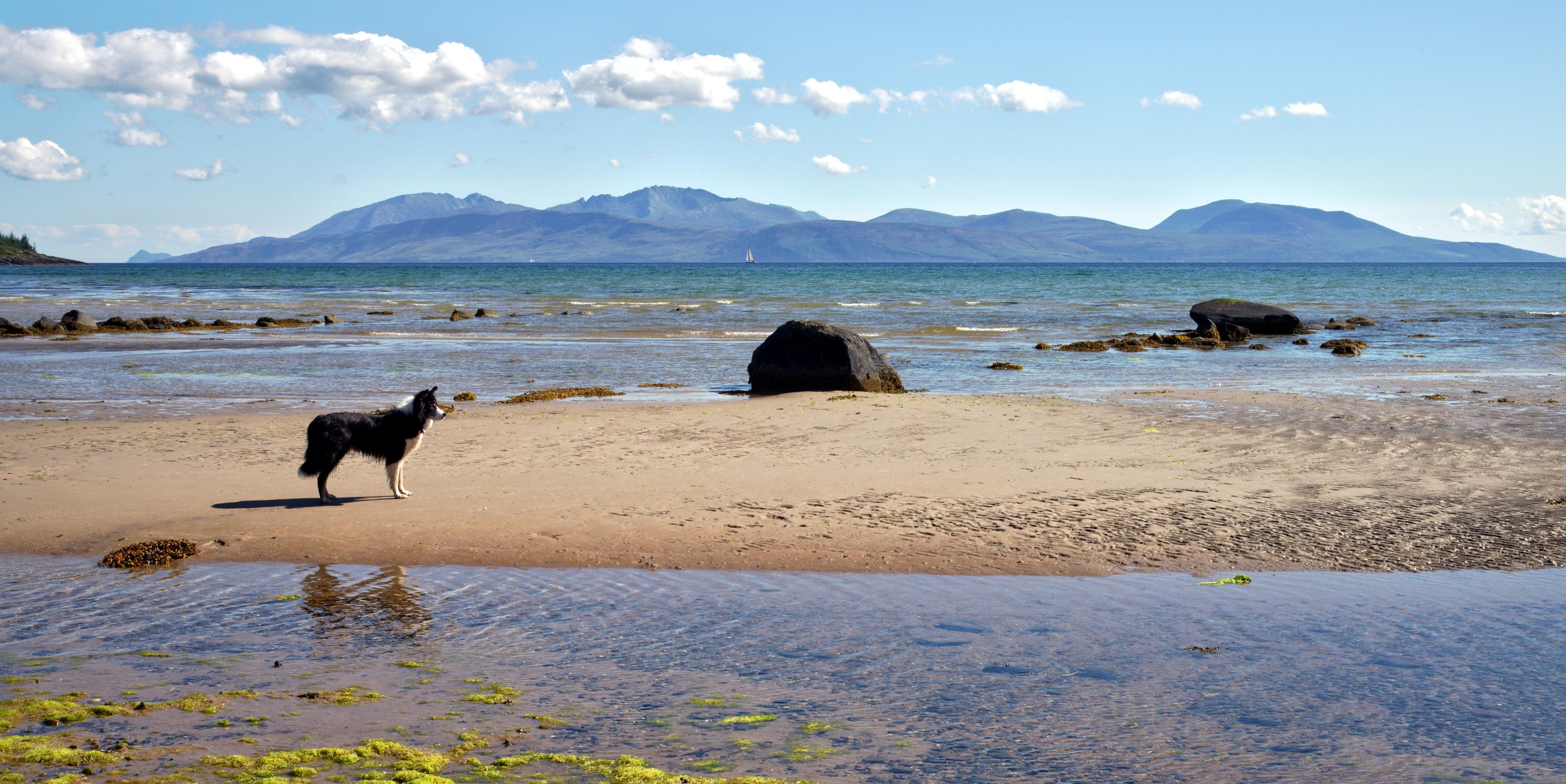 Arran from Kilbride Bay