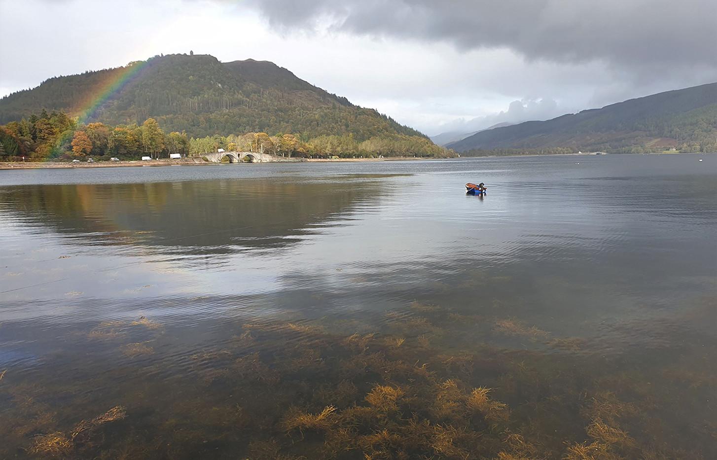 Autumnal day at Loch Fyne - Fiona Biggart