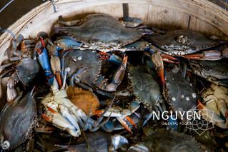 Diepvries | Vietnamese krab