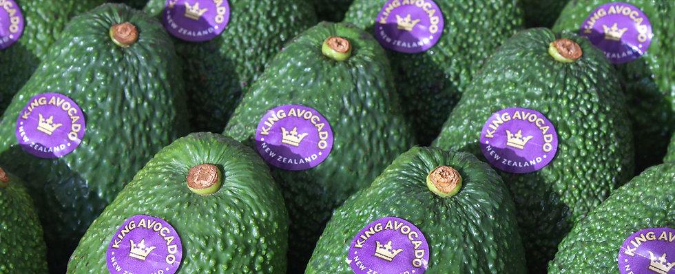 avocado-banner.jpg